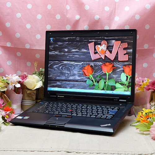 ThinkPad SL500 (Celeron 900 2.20GHz/2GB/320GB/DVDコンボ/Windows7Pro64bit/15.4インチ/無線LAN)
